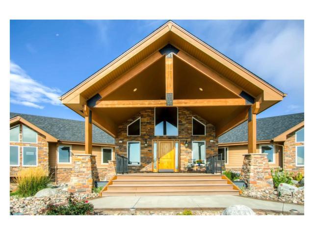 7407 Lemon Gulch Way, Castle Rock, CO 80108 (MLS #2690537) :: 8z Real Estate