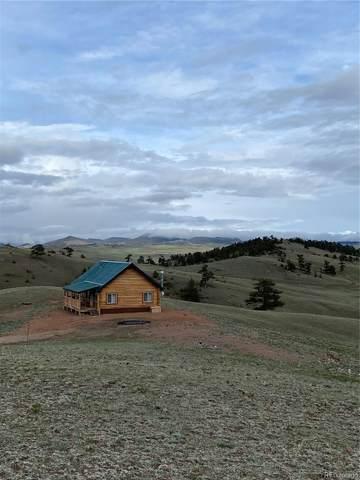 670 Kinkehee Trail, Hartsel, CO 80449 (#2699667) :: Wisdom Real Estate