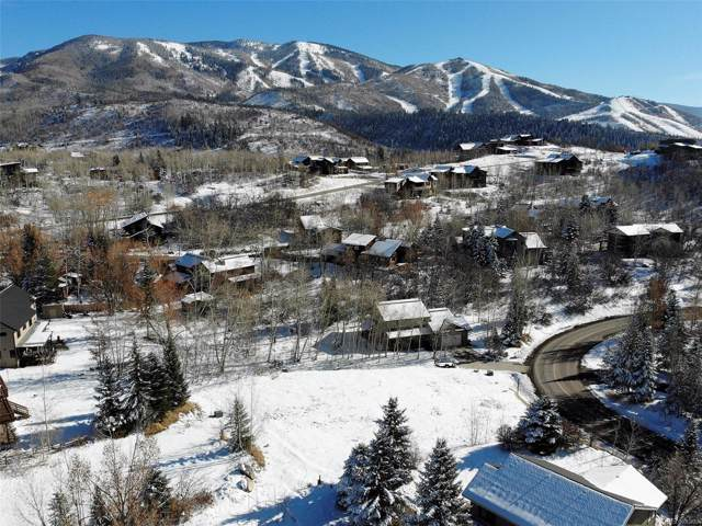 50 Steamboat Boulevard, Steamboat Springs, CO 80487 (#2704143) :: The Margolis Team