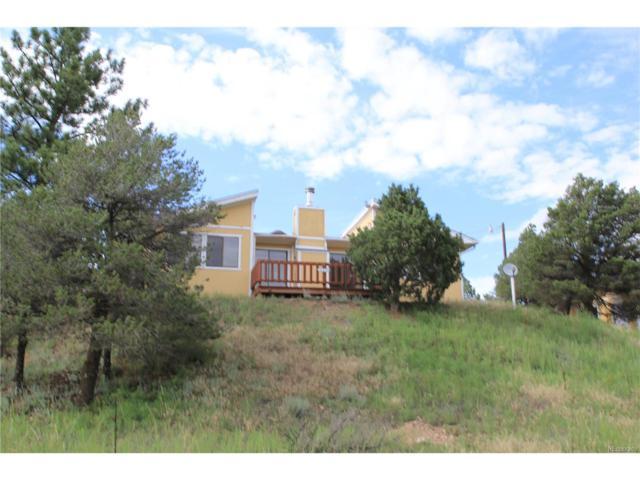 3986 Cr 28, Cotopaxi, CO 81223 (MLS #2707865) :: 8z Real Estate