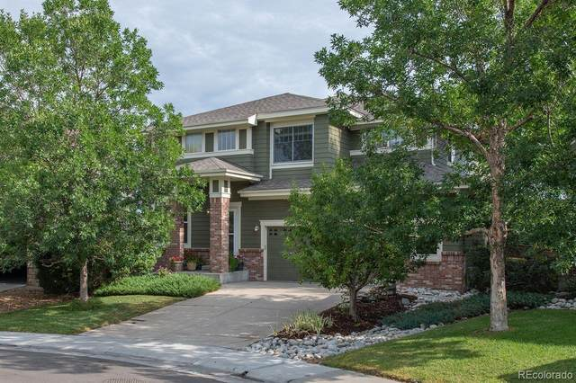 3557 Craftsbury Drive, Highlands Ranch, CO 80126 (#2725761) :: Kimberly Austin Properties