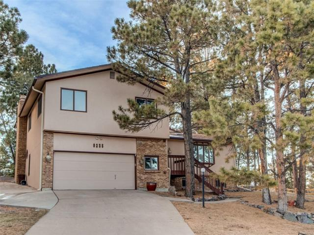 9235 Morning Star Place, Parker, CO 80134 (#2752885) :: The HomeSmiths Team - Keller Williams