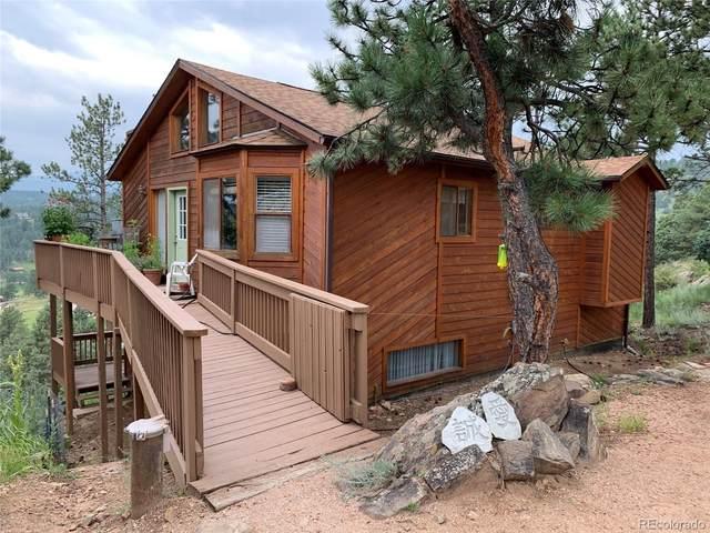 369 Doe Circle, Bailey, CO 80421 (#2758570) :: Wisdom Real Estate