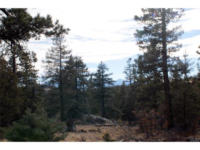 Trail Drive, Cotopaxi, CO 81223 (#2765245) :: Hometrackr Denver