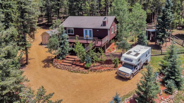 8820 London Lane, Conifer, CO 80433 (MLS #2777148) :: 8z Real Estate