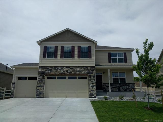 5981 High Timber Circle, Castle Rock, CO 80104 (MLS #2818907) :: 8z Real Estate
