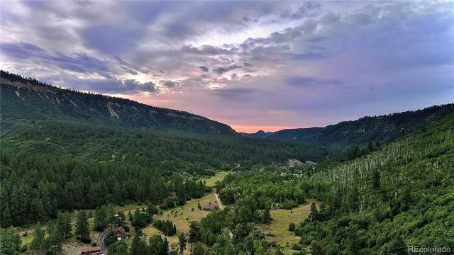 P5 County Road 207, Durango, CO 81301 (#2853551) :: The Healey Group