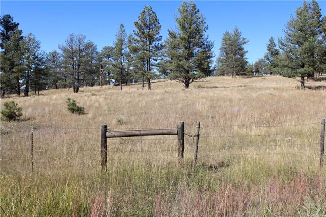Cattle Circle, Kiowa, CO 80117 (#2877174) :: The DeGrood Team