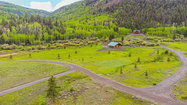 466 River Run Drive, Antonito, CO 81120 (MLS #2878718) :: Bliss Realty Group