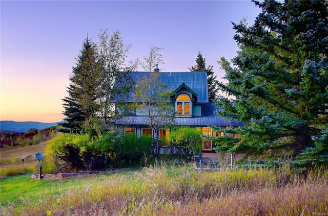 22040 Whitewood Drive, Steamboat Springs, CO 80487 (MLS #2912819) :: 8z Real Estate