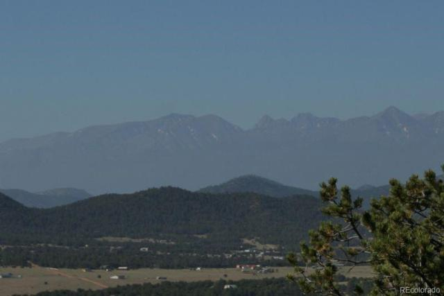 1214 Kevin Drive, Cotopaxi, CO 81223 (#2938334) :: Bring Home Denver