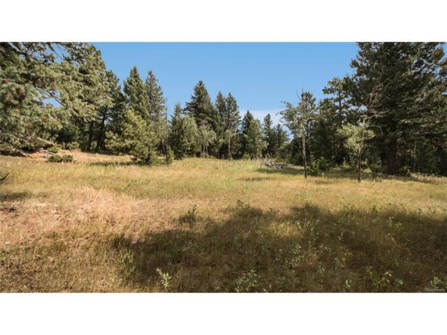 8800 S Blue Creek Road, Evergreen, CO 80439 (MLS #2950761) :: 8z Real Estate