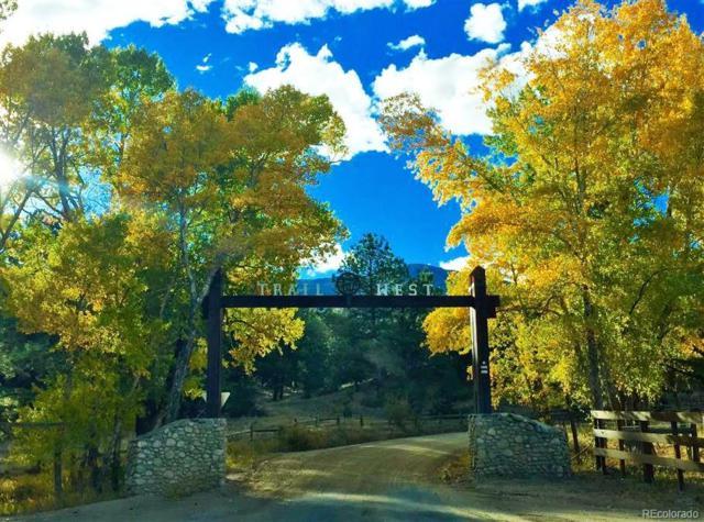 18235 Trail West Drive, Buena Vista, CO 81211 (MLS #2955798) :: 8z Real Estate