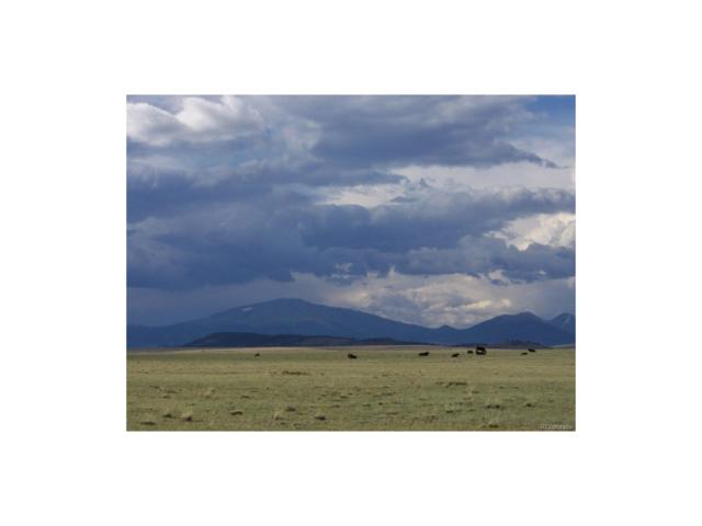 Salt Ranch Trail, Hartsel, CO 80449 (#2975120) :: RE/MAX Professionals