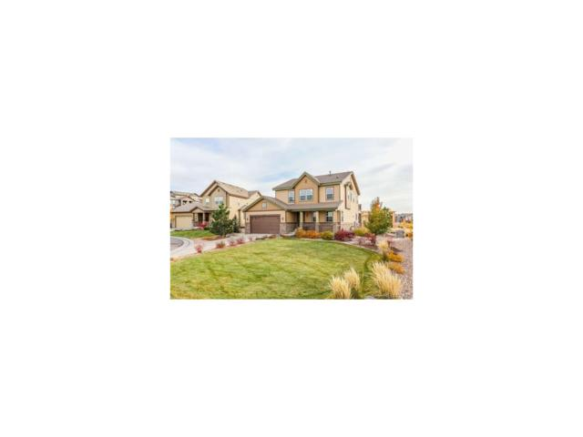 10451 Meadowleaf Way, Highlands Ranch, CO 80126 (#2986946) :: The Peak Properties Group