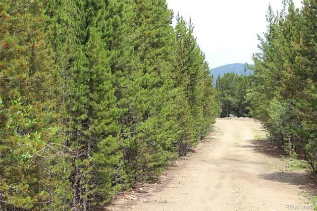 None, Idaho Springs, CO 80452 (#2988940) :: The DeGrood Team