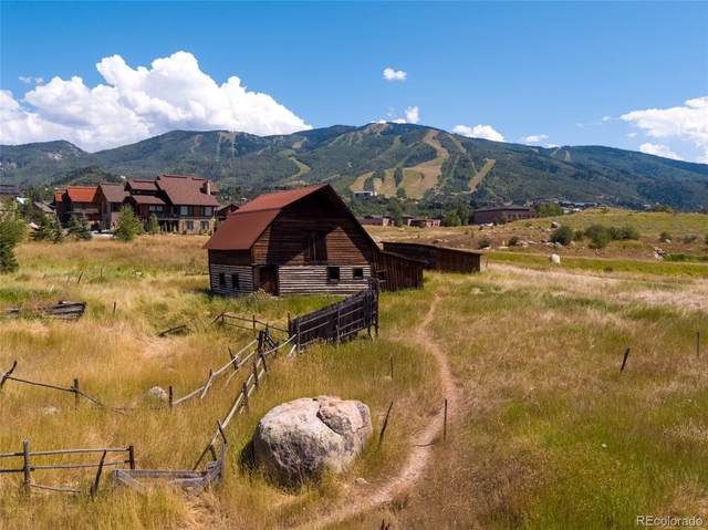 780 Twilight Lane, Steamboat Springs, CO 80487 (#2991327) :: The DeGrood Team