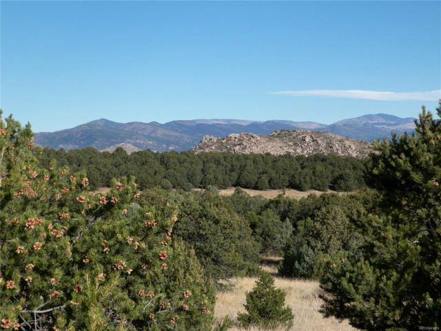 2154 Cowboy Way, Cotopaxi, CO 81223 (MLS #3002312) :: Kittle Real Estate