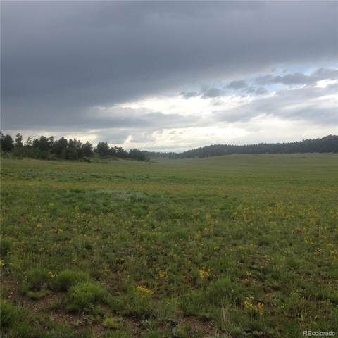 001 Dog Chief Trail, Hartsel, CO 80449 (#3002328) :: James Crocker Team