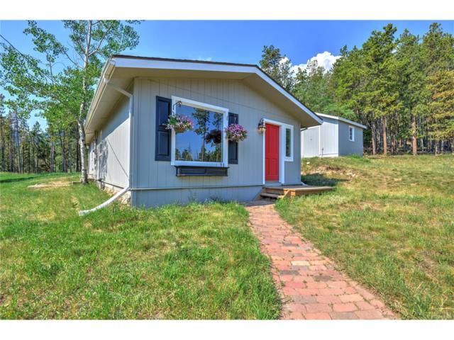 96 Cedar Road, Evergreen, CO 80439 (MLS #3018892) :: 8z Real Estate