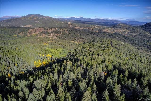 13250 Powhatan Trail, Conifer, CO 80433 (#3026916) :: Sultan Newman Group