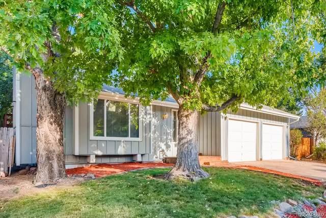11973 W Hornsilver Mountain Road, Littleton, CO 80127 (MLS #3033583) :: 8z Real Estate