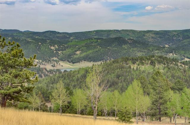 801 Bradley Ranch View, Cripple Creek, CO 80813 (#3048140) :: Bring Home Denver