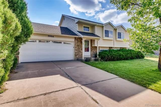 5986 S Pierson Street, Littleton, CO 80127 (MLS #3064135) :: Find Colorado