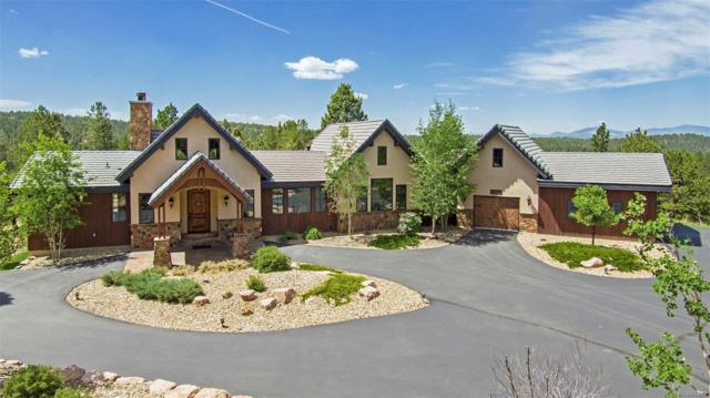 4177 Cedar Mountain Road, Divide, CO 80814 (#3064850) :: Wisdom Real Estate