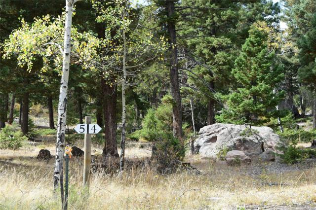 24143 Peak Drive, Conifer, CO 80433 (MLS #3081370) :: 8z Real Estate