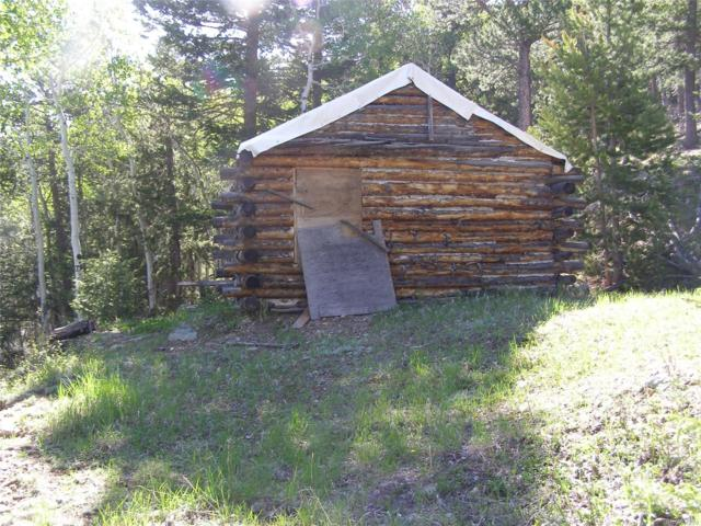 Miners Candle Road, Idaho Springs, CO 80452 (#3116816) :: Wisdom Real Estate