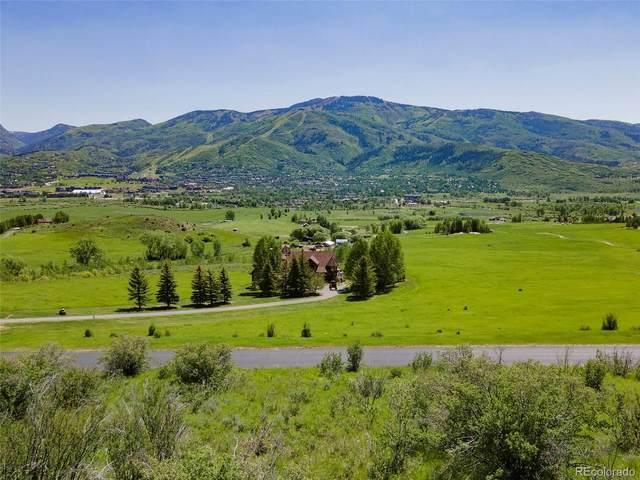 31615 Aspen Ridge Road, Steamboat Springs, CO 80487 (MLS #3143579) :: Bliss Realty Group