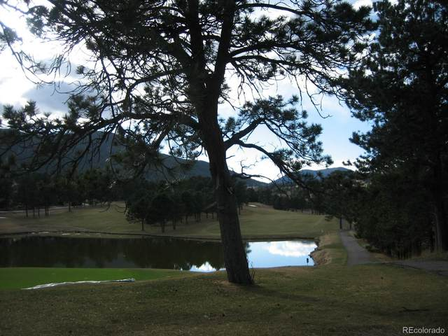 Lot 363 Interlocken Court, Evergreen, CO 80439 (#3163010) :: The Dixon Group