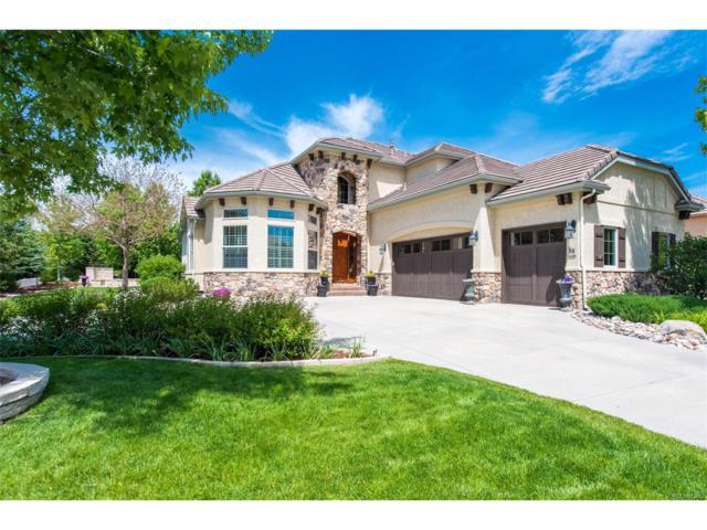38 Brookhaven Place, Littleton, CO 80123 (MLS #3194471) :: 8z Real Estate
