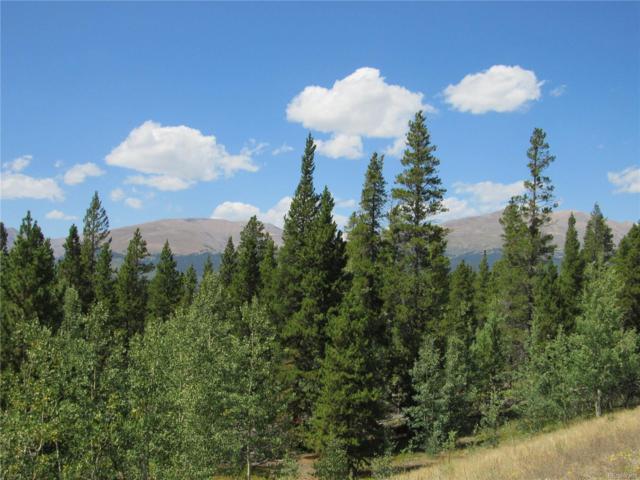 0 Glacier Ridge Road, Alma, CO 80420 (#3206454) :: Structure CO Group