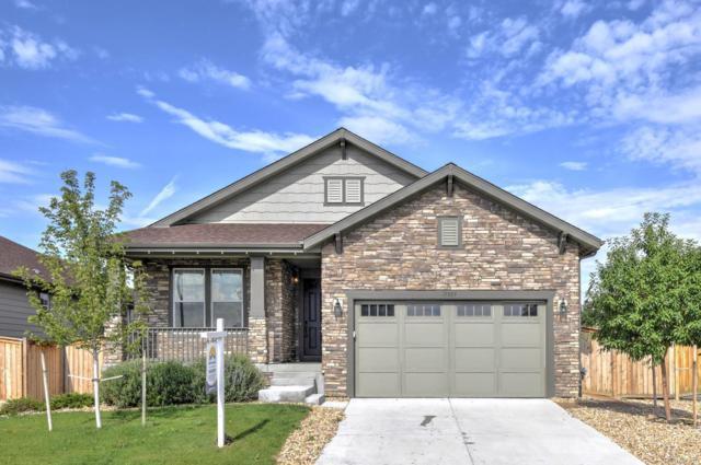 15889 Josephine Street, Thornton, CO 80602 (#3217063) :: The Peak Properties Group