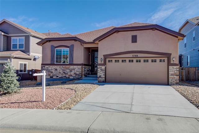 5788 Haywagon Lane, Castle Rock, CO 80108 (MLS #3225063) :: 8z Real Estate