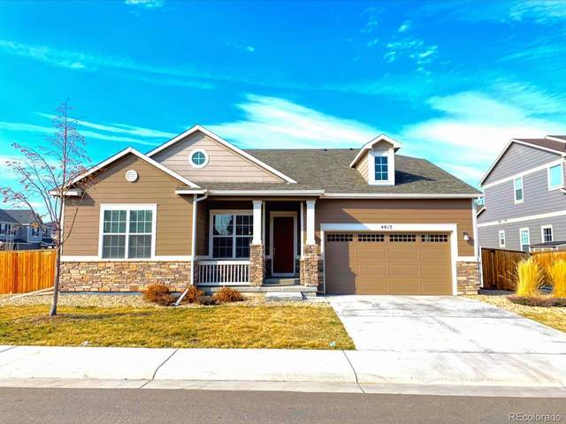4813 E 142nd Place, Thornton, CO 80602 (#3244919) :: The DeGrood Team