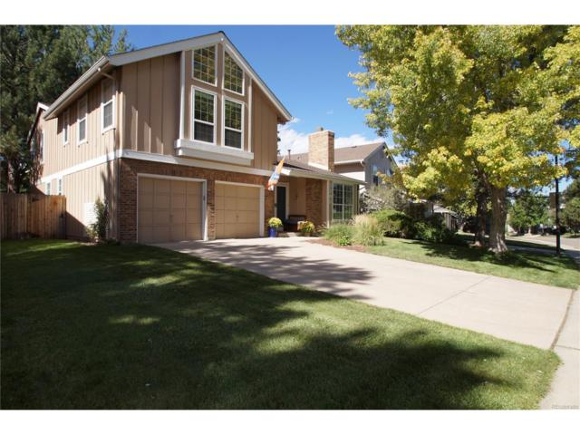 7795 S Hill Drive, Littleton, CO 80120 (MLS #3249736) :: 8z Real Estate
