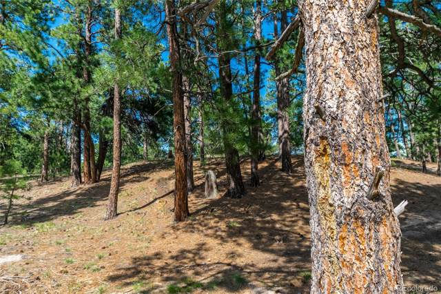 18845 Hilltop Pines Path, Monument, CO 80132 (#3255438) :: The DeGrood Team