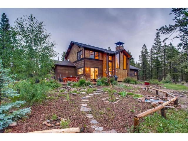 300 Alpine Cirque, Leadville, CO 80461 (MLS #3256641) :: 8z Real Estate