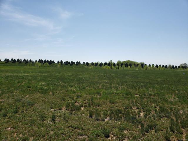3928 Vale View Lane, Mead, CO 80542 (#3290416) :: The HomeSmiths Team - Keller Williams