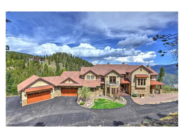 580 Packsaddle Trail, Evergreen, CO 80439 (MLS #3295823) :: 8z Real Estate