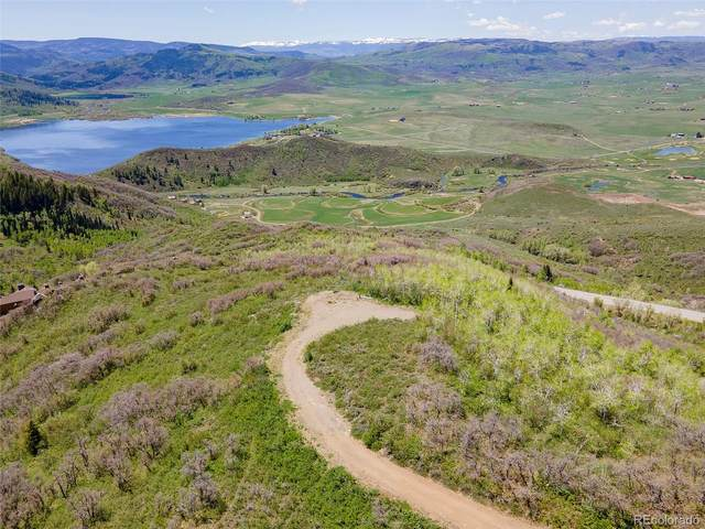 31665 Timbers Ridge Way, Steamboat Springs, CO 80487 (#3310129) :: Symbio Denver