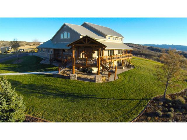 934 S Perry Park Road, Sedalia, CO 80135 (#3313959) :: Wisdom Real Estate