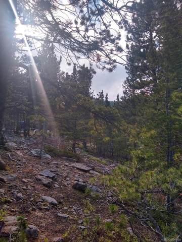 329 Eva Road, Idaho Springs, CO 80452 (MLS #3331034) :: Bliss Realty Group