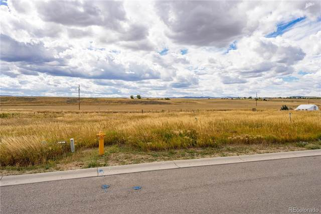 882 Dry Creek South Road, Hayden, CO 81639 (#3342723) :: Wisdom Real Estate