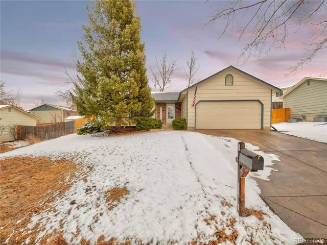 6465 Bugle Drive, Colorado Springs, CO 80918 (#3380003) :: Venterra Real Estate LLC