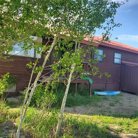 78 Gcr 4951, Grand Lake, CO 80447 (#3381919) :: Wisdom Real Estate