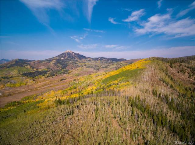 Tbd Usfs Road 409, Clark, CO 80428 (#3388506) :: The DeGrood Team